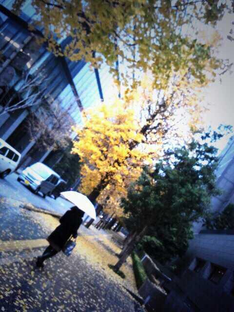 12/14(土) <br />  渋谷7th FLOOR<br />  ★カナコNIGHT<br />  に出演します♪